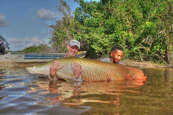 Fishing for giant arapaima — photo 01