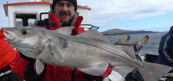 Sea fishing in the Bay of Reykjavik — photo 01